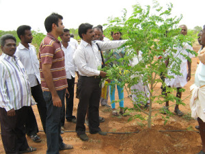 Savera Farms – IT professional operates integrated farm in Tamil Nadu