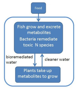 NARDC - aquaponics definition