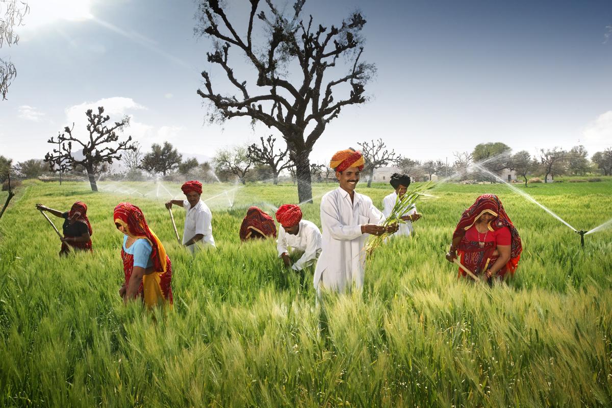 an indian farmer in marathi