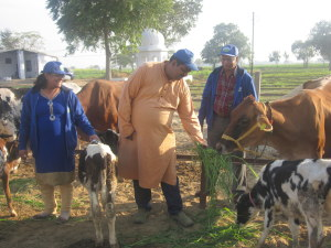 Summeer Bajpai – finance professional takes up dairy farming