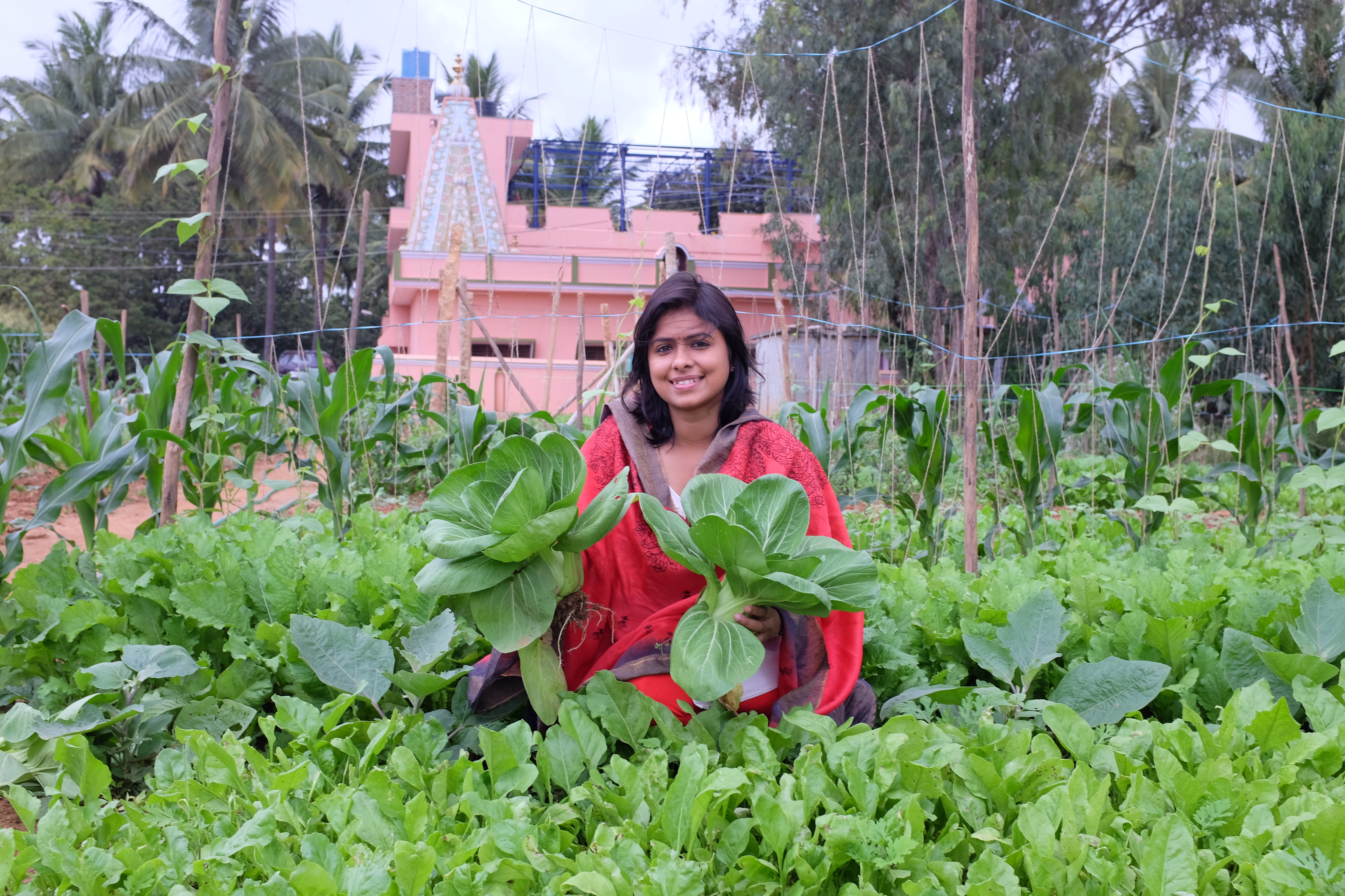 Gitanjali rajamani landscape architect develops urban for Garden information sites