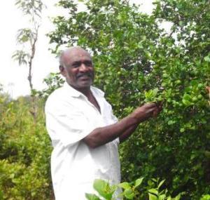 Mr. Muthu in his farm