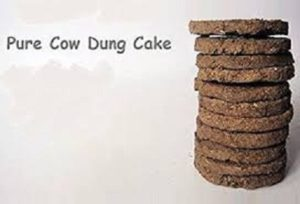 PEI Organic Foods – sells cow dung cakes online