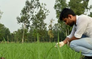 Prateek Bajaj in his farm