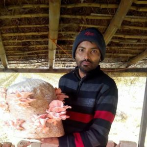 Mahendra Pal Gangwar – scales up family business of mushroom farming and opens new doors of growth for fellow farmers