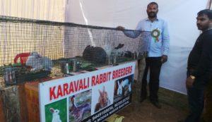 Karavali Rabbit Farm