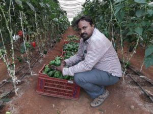 Centre of Excellence for Protected Cultivation – promotes growing vegetables and flowers in polyhouse