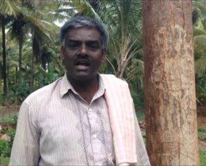 Kalpashri Farm – prospers with melia dubai and farm integration