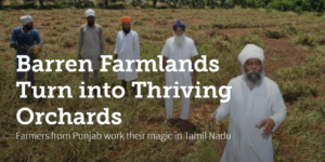 Barren Farmlands Turn into Thriving Orchards