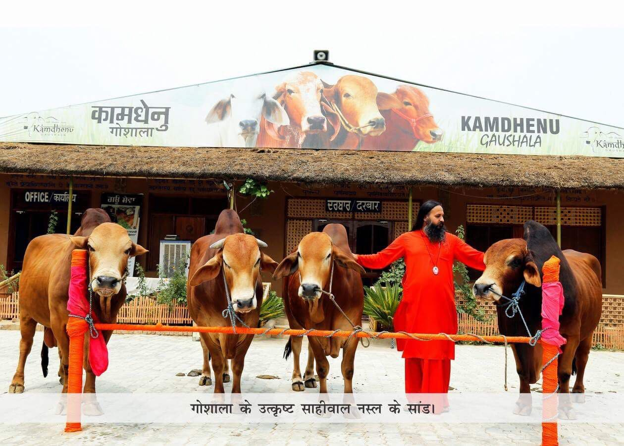 Divya Jyoti Jagrati Sansthan – uses blend of traditional and modern