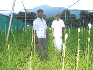 Sunderraj – moves to flower cultivation from conventional crops for better returns