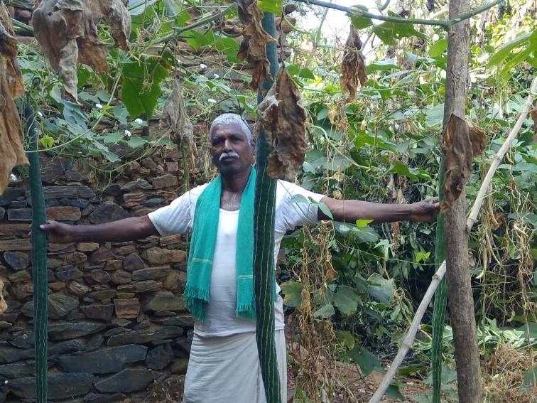 Eshwarappa Siddappa Banakar – maintains seed bank of 250+ indigenous crops varieties