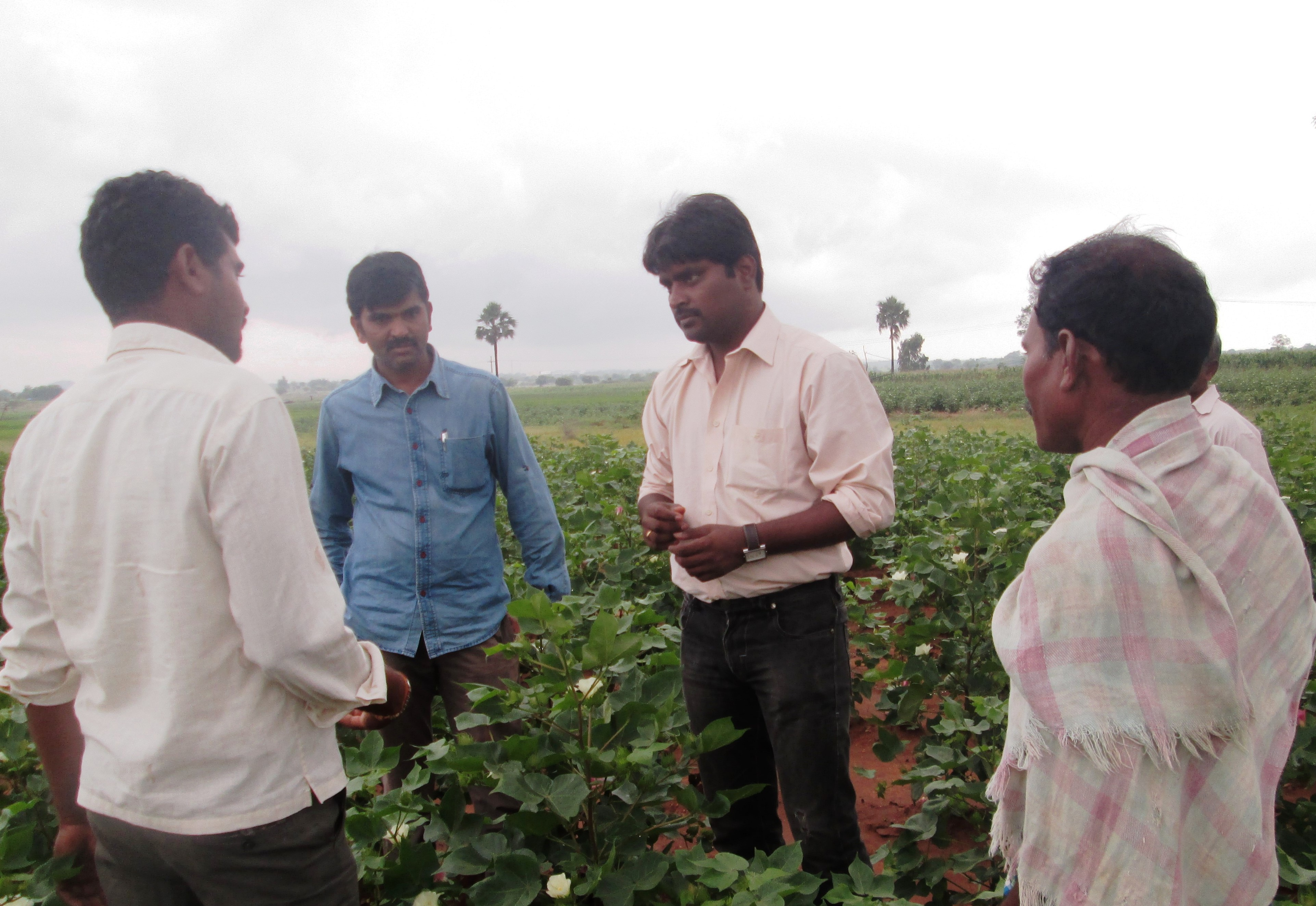 Aneel Kumar Ambavaram – improves lives of tribal farmers by providing assistance in production and marketing