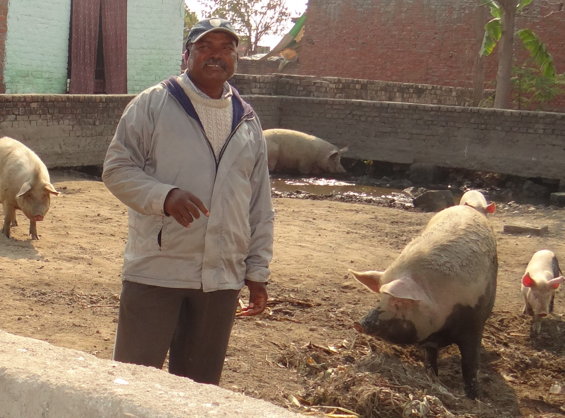 Aman Lakra – concentrates on livestock rearing for farm integration and increases farm revenues by four times