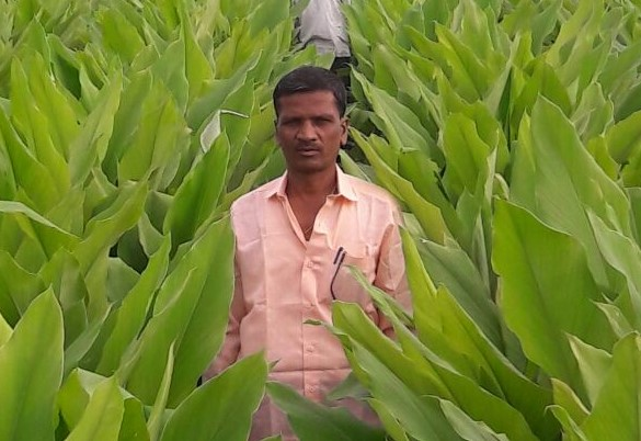 Dhanpal Nagappa Yallatti – with intercrops to cope with challenges in farming