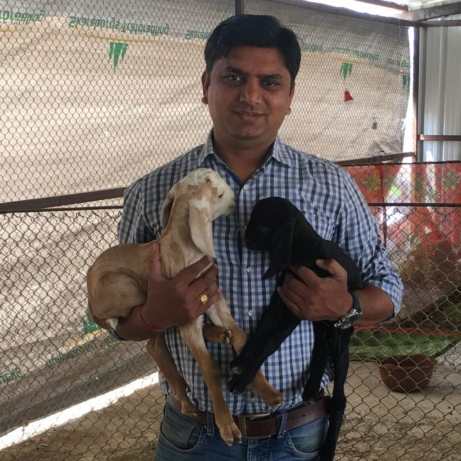 Sachin Rindhe – IT professional establishes technology driven goat farm in Maharashtra