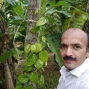 Mr. Narayana Upadhyaya – Certifying organic produce