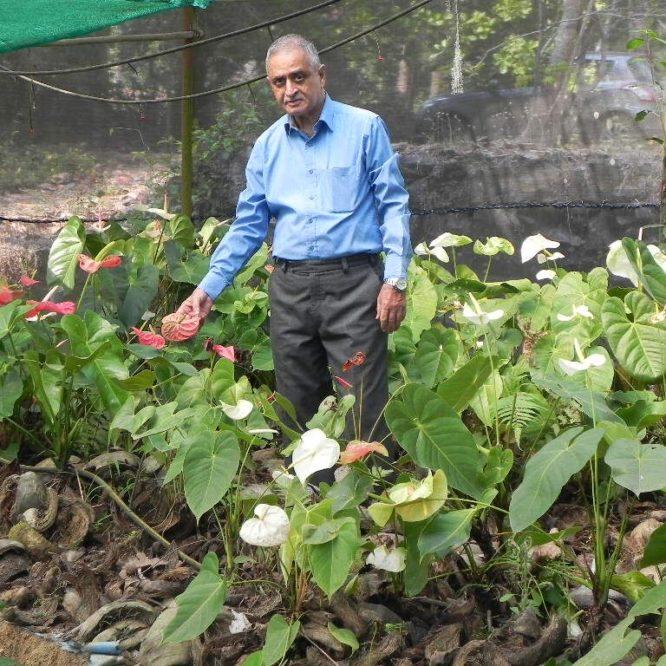 Mr. Vasanth Rao